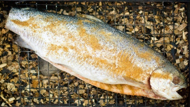 How to Marinate and Smoke Trout at This Mama Cooks! On a Diet - thismamacooks.com