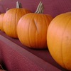 Four ways to cook a fresh pumpkin