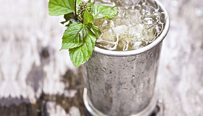 A Mint Julep recipe from Shake, Stir, Pour