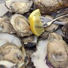 Wordless Wednesday: Oysters at George's Lowcountry Table #ww