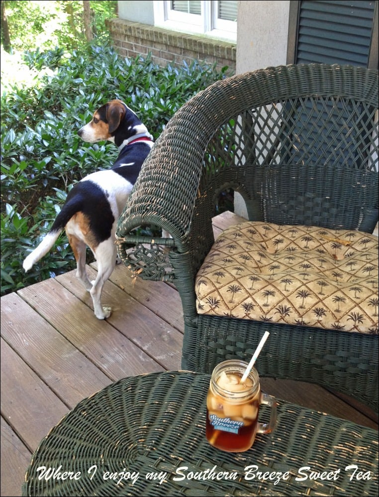 Hanging out on the porch with Nellie and Southern Breeze Sweet Tea at This Mama Cooks! On a Diet - thismamacooks.com