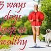 5 ways dogs keep us healthy