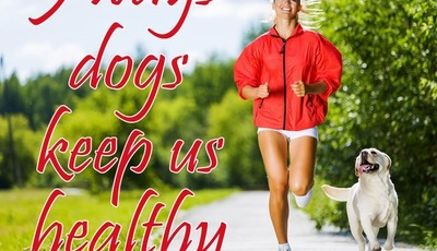 5 ways dogs keep us healthy