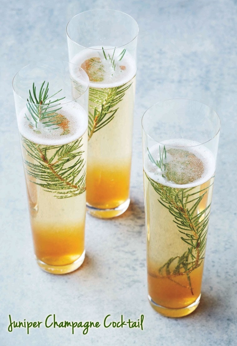Ringing the New Year in with a Juniper Champagne Cocktail. Get the recipe at This Mama Cooks! On a Diet - thismamacooks.com