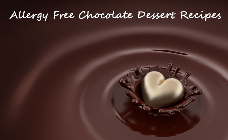 Allergy Free Chocolate Dessert Recipe Roundup at This Mama Cooks! On a Diet
