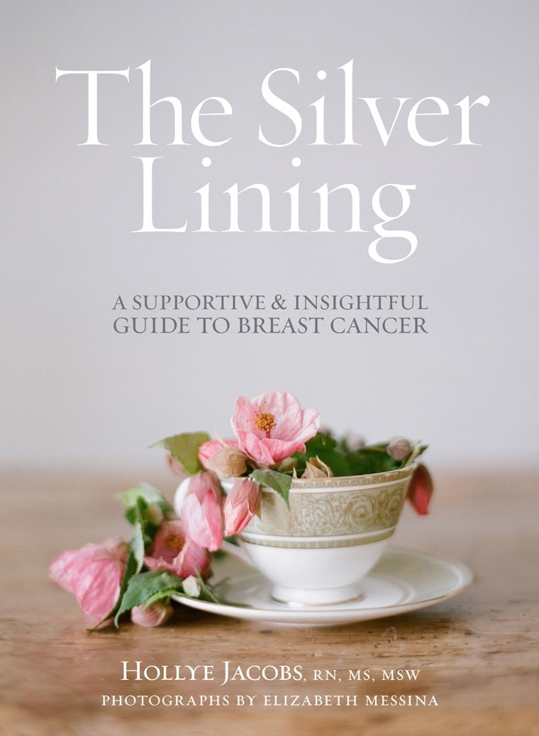 Touched by breast cancer? Learn how you can down a free copy of The Silver Lining Companion Guide at This Mama Cooks! On a Diet
