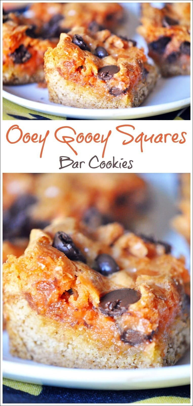 Need a quick Thanksgiving dessert recipe? This bar cookie recipe can easily be made gluten free and dairy free. Check out the quick and easy cookie recipe for Ooey Gooey Squares Bar Cookies by Holly Clegg at This Mama Cooks! On a Diet.
