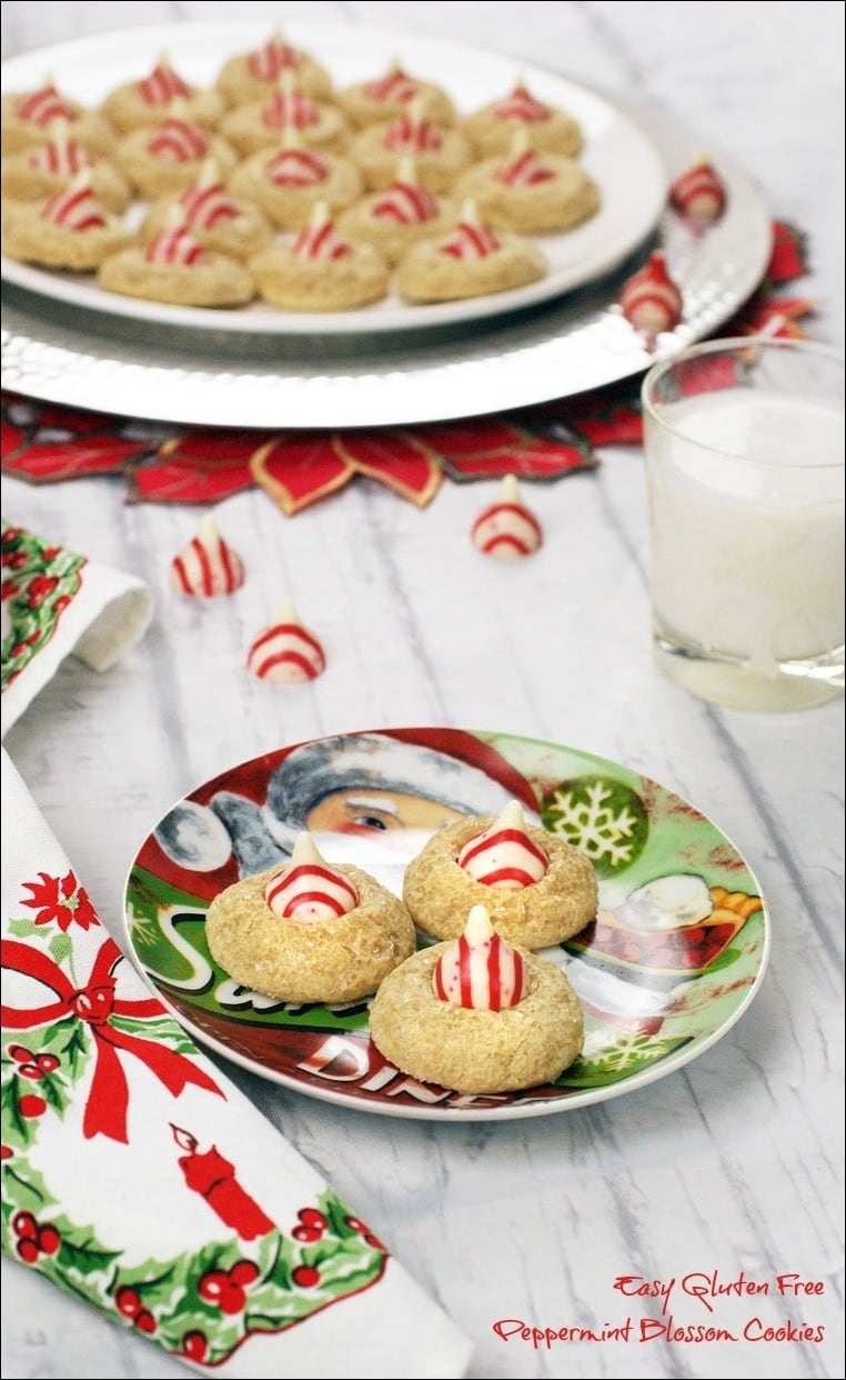 Need a gluten free Christmas holiday cookie recipe? Try these Easy Gluten Free Peppermint Blossom Cookies. They can also be made dairy free! Get the recipe at This Mama Cooks! On a Diet