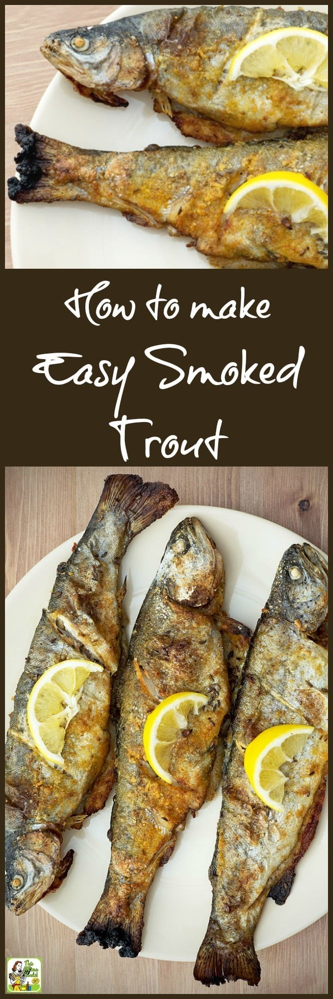 Got fish? Learn how to make smoked trout for dinner or your next fish fry party! It's easier than you think if you have an electric smoker or a grill that you can smoke in. Just make a simple marinade from salad dressing. Once you've tasted smoked trout, you'll never want to cook fish another way!