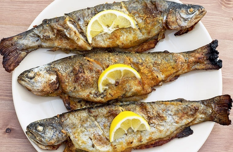 Love to fish? Learn how to make smoked trout for dinner? It's easier than you think if you have an electric grill or a grill that you can smoke in.