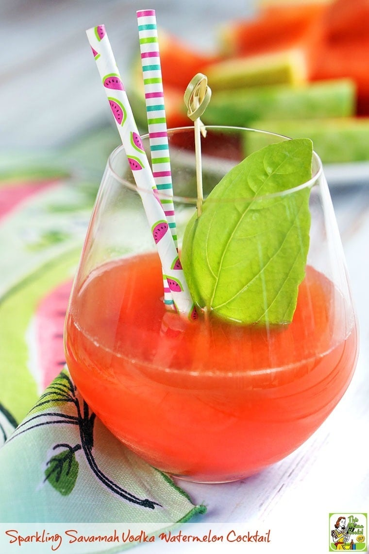 A glass of Sparking Savannah Vodka Watermelon Cocktail with a straw and leave of basil.