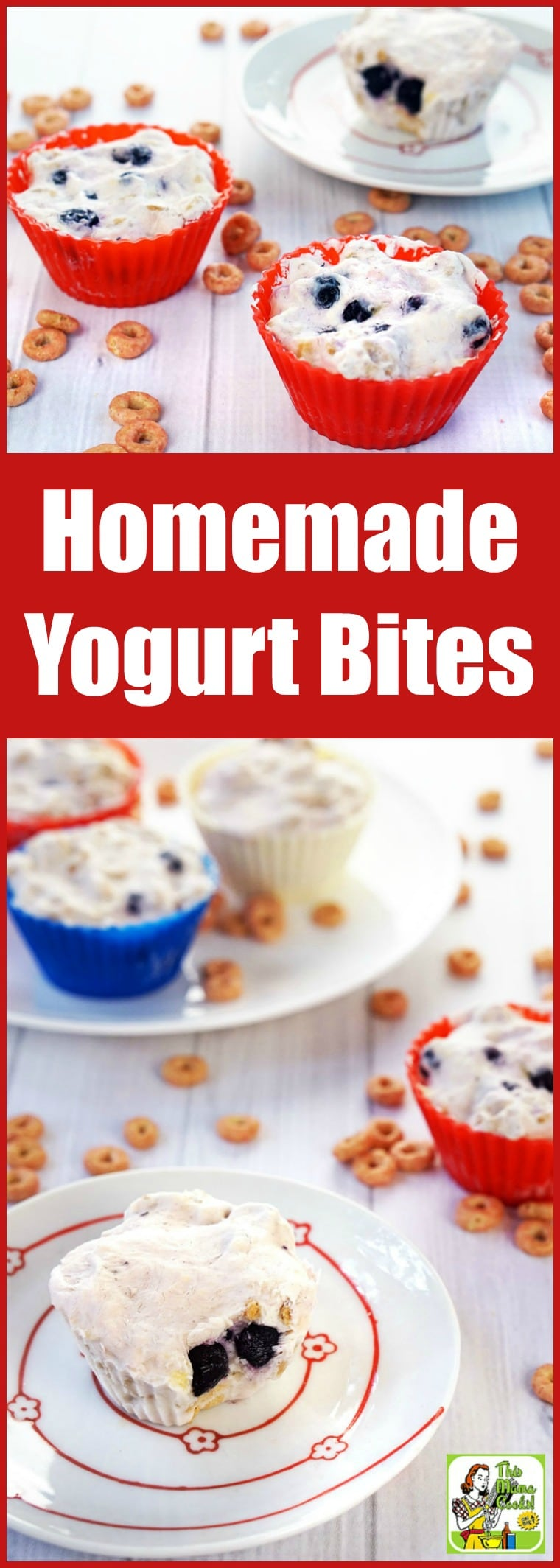 Homemade Yogurt Bites Recipe