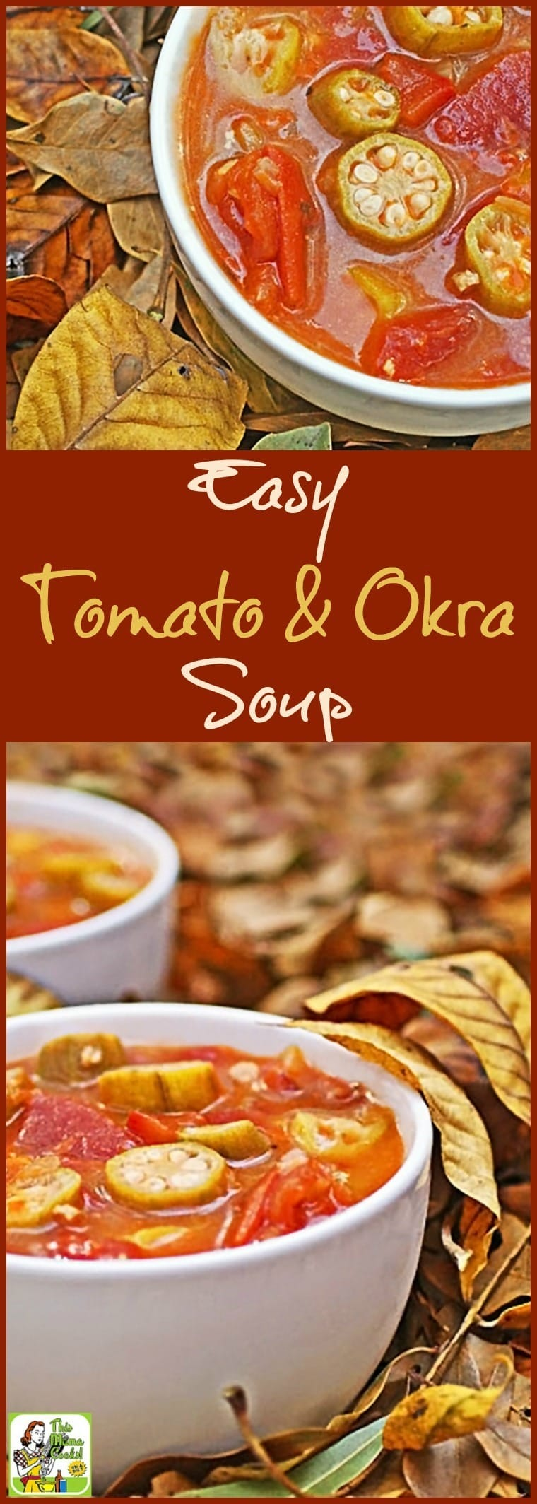 Have you ever tried okra soup? Well, if you're looking for an easy to make, healthy soup recipe, you'll love this Easy Tomato & Okra Soup recipe. So delicious, even your kids will ask for seconds! Make a double batch and freeze half for another night's soup and salad lunch or dinner. #soup #okra #tomatoes #easyrecipe #healthysoup #glutenfree #soupandsalad #healthyrecipe