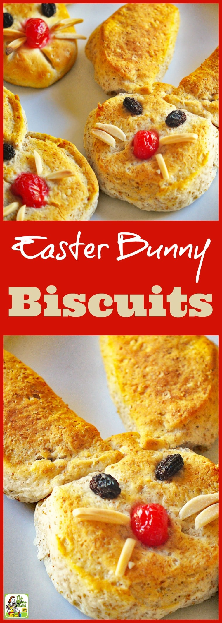 Easter Bunny Biscuits makes the perfect Easter breakfast or snack. Bake up these simple Easter biscuits with your kids or grandkids. This easy Easter bunny biscuits recipe is made with refrigerated biscuit dough. #Easter #bunny #biscuits #kidfriendly #EasterBunny #snack #breakfast #baking #EasterBrunch