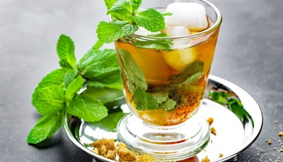 The Best Mint Julep Recipe with Ginger and Lemon for Derby Day!