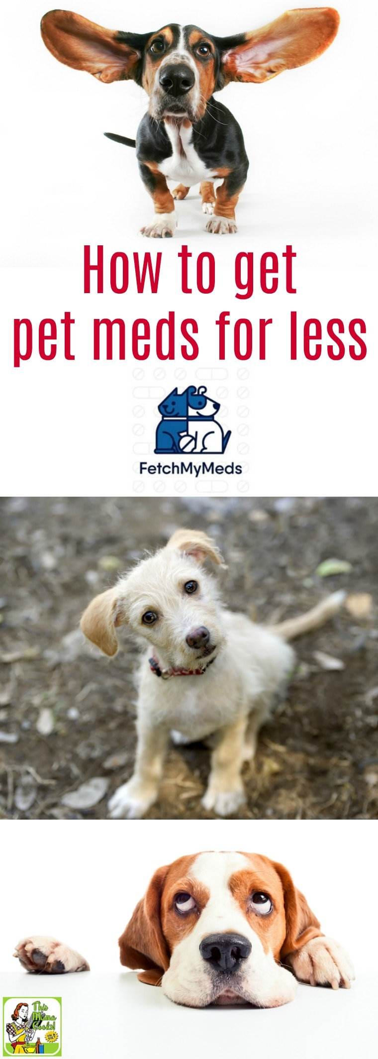 Want to learn how to get pet meds for less? Check out Fetch My Meds, a great program for discount pet meds. It's a pet prescription discount card can help you save on pet meds. Free, easy to use and takes only a couple of minutes to sign up. #pets #petmeds #petmedsforless #discountpetmeds #petRx #dogs #cats #lovedogs #lovecats