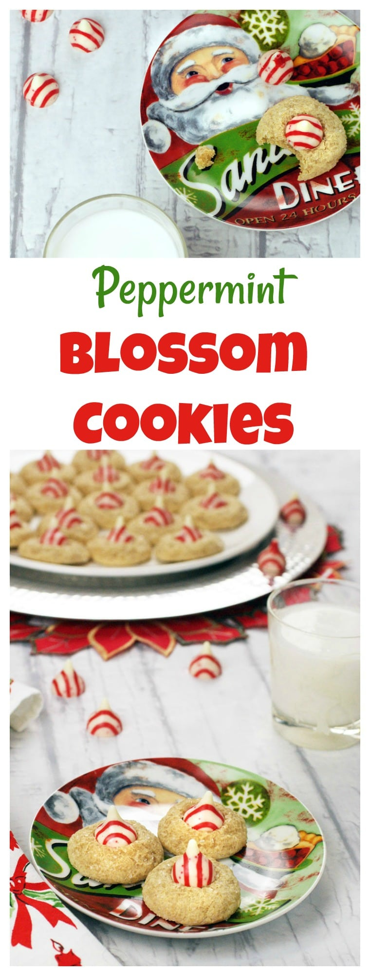 Baking holiday blossom cookies for your Christmas cookie swap? You'll love these Easy Gluten-Free Peppermint Blossom Cookies. This Hershey blossom cookies recipe uses white chocolate Kisses. Dairy free and gluten free. Can be made under 1 hour. #glutenfree #dairyfree #cookies #kisses #herseyskisses #christmas #homemadegifts #cookieexchange #cookieswap #peppermint #blossomcookies #recipe #easy #recipeoftheday #easyrecipes