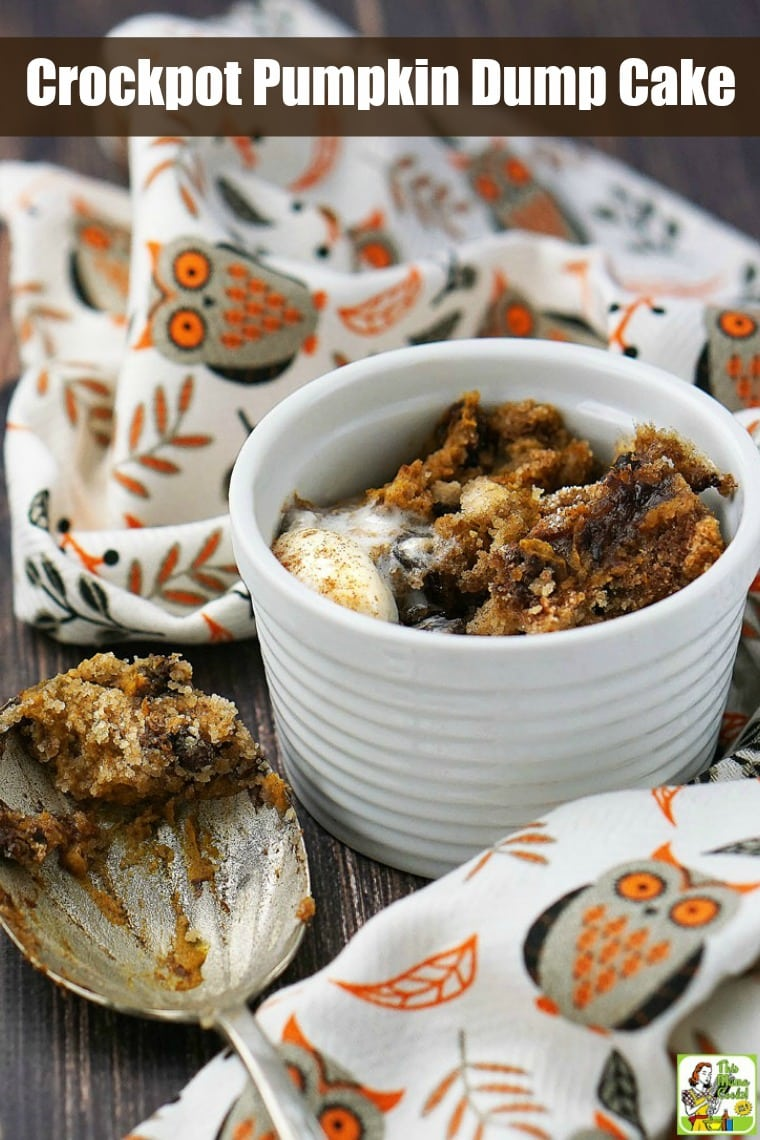 A bowl of pumpkin dump cake with coconut ice cream, a serving spoon, and an owl tea towel.