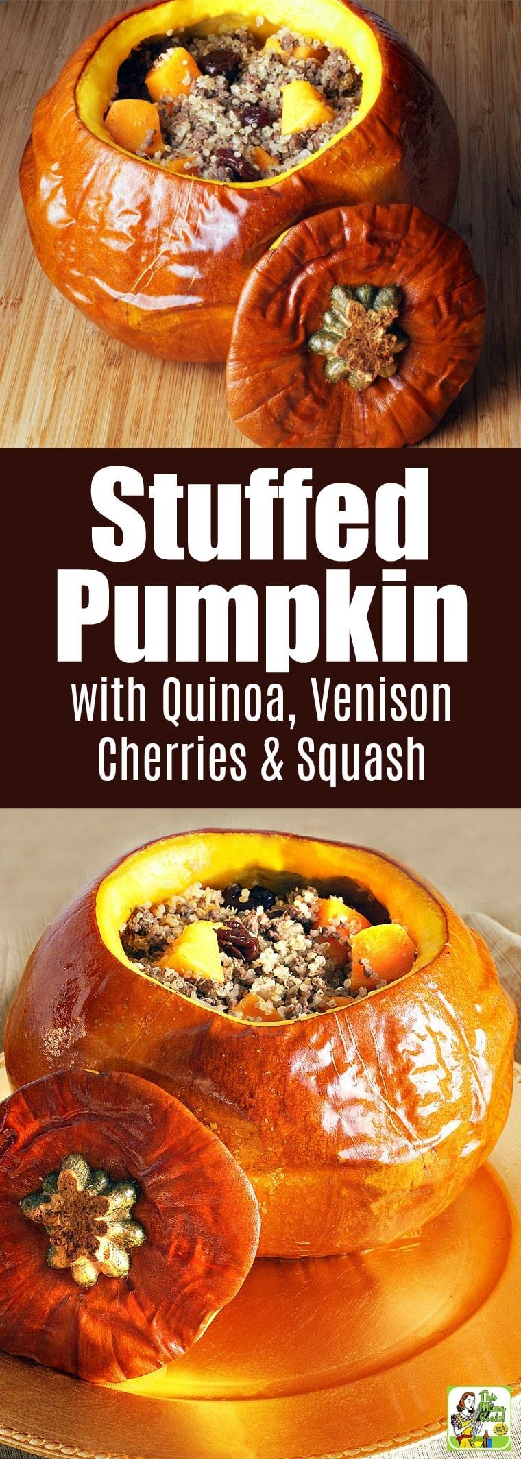 Quinoa Stuffed Pumpkin Recipe with Venison, Cherries & Squash