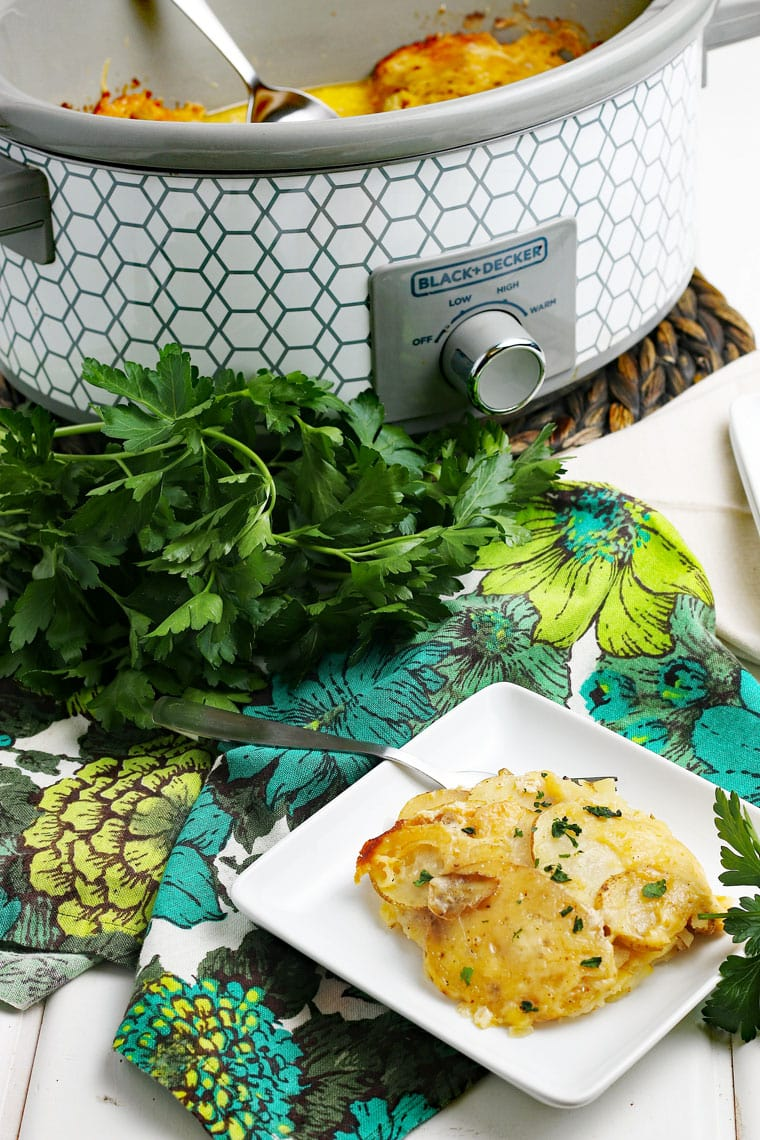 A slow cooker of scalloped potatoes with a white square plate of scalloped potatoes with a fork, floral napkin, and a bunch of fresh parsley.
